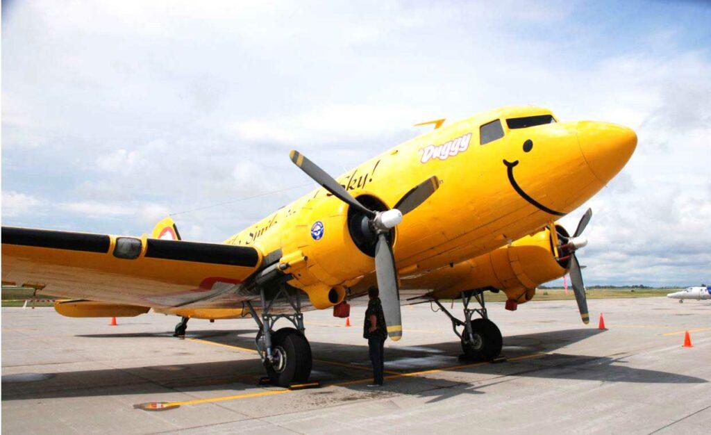 DC 3 Duggy